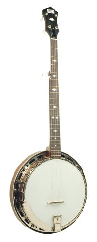 Recording King Rk-R25-Br Madison Tube And Plate Banjo