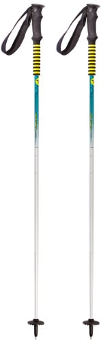 Salewa Skitourenstock Fire Trail Pole, ice green, 125, 00-0000005282