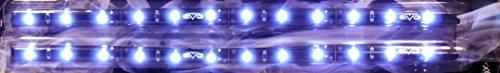 Bande LED blanche ultrabrights 20 cm