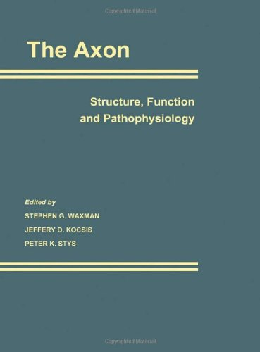 The Axon: Structure, Function And Pathophysiology