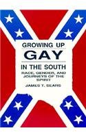 Growing Up Gay In The South: Race, Gender, And Journeys Of The Spirit (Gay & Lesbian Studies) front-947240
