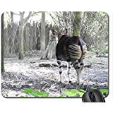 Zoo with the Okapi Mouse Pad, Mousepad
