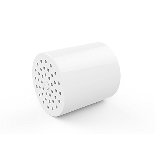 shower filter with replaceable 2 stage filter cartridge that removes chlorine. Black Bedroom Furniture Sets. Home Design Ideas