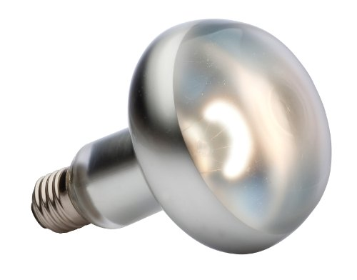 spot lamp 150 watt 120 volt animals pet supplies pet supplies reptile. Black Bedroom Furniture Sets. Home Design Ideas