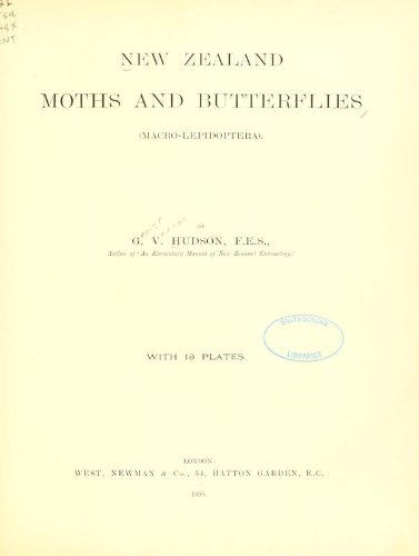 New Zealand Moths and Butterflies