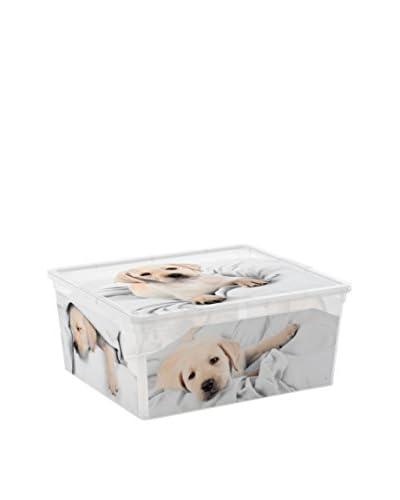 Kis Set Caja de Almacenamiento 6 Uds. C-Box Style M PUPPY & KITTEN