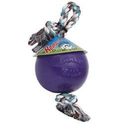 Jolly Pet Romp-n-Roll Durable Dog Toy Purple 8in