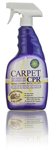 Carpet CPR Spot & Stain Remover, 24-oz (Carpet Cleaner Folex compare prices)