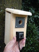 birdhouse-spy-cam-bcamhehd-hawk-eye-hd-camera