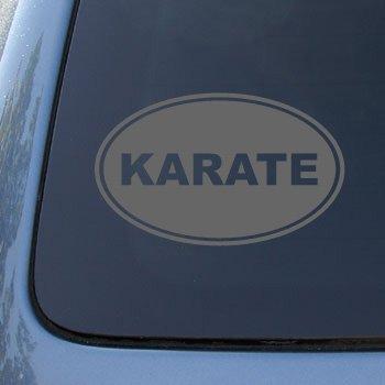 KARATE EURO OVAL - Martial Arts - Vinyl Car Decal Sticker #1723 | Vinyl Color: Silver