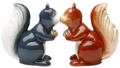 Squirrels Magnetic Ceremic Salt and Pepper Shakers