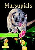 img - for Marsupials book / textbook / text book