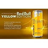 Red Bull LIMITED SUMMER EDITION Energy Drink - 12-Ounce Cans - 2-Count - Tropical Fruit Flavor