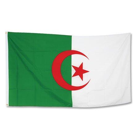 Algeria Large Flag 90x150 - OS