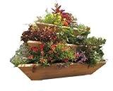 Triolife 3-Tier Plant Pyramid