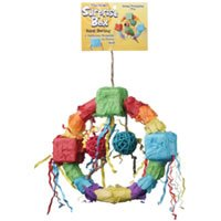 Surprise Box Swing Bird Toy