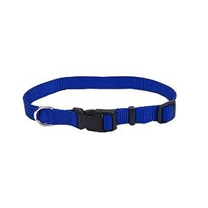 Coastal Pet 06601 A BLU20 Adjustable Cat Collar, 3/4-Inch, Blue