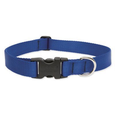 Lupine 1-Inch Adjustable Dog Collar