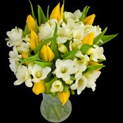 Mellow Yellow Bouquet from InterRose the online Florist of Choice