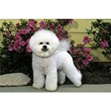 Bichon Frise Floor Mat
