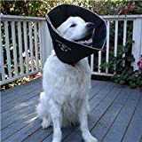 Comfy Cone All Four Paws - E-Collar - Dog/Puppy (Buster) Head Collar - Medium - 20Cm