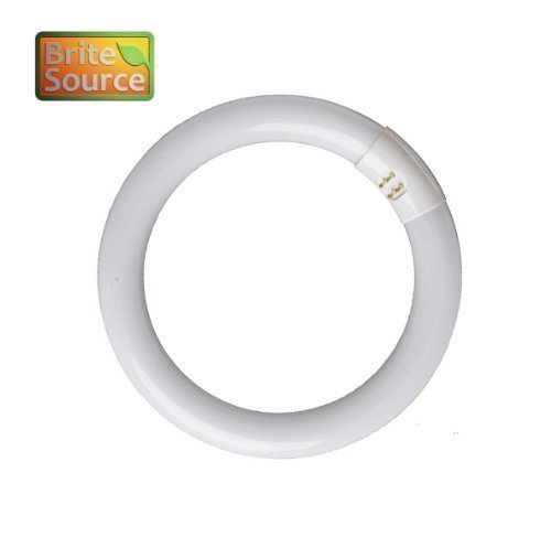 brite-source-40w-t9-circular-energy-saving-fluorescent-tube-light-bulb-4-pin-colour-standard-white-8