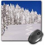 danita-delimont-winter-montana-usa-turn-tracks-off-of-lodi-mousepad-mp-207246-1