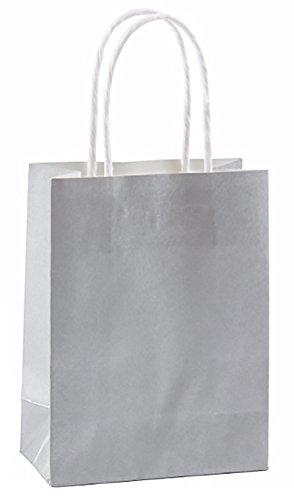 Silver Mini 5