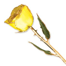 Lacquer Dipped Gold Trim Yellow Rose Coupon 2016