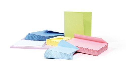 Paquet de 25 cartes de visite POLLEN format 82x128mm coloris blanc référence 1416.