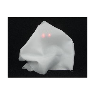 Animated Ghost Kit