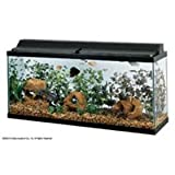 All Glass Aquarium AAG21248 Fluorescent Deluxe Hood, 48-Inch