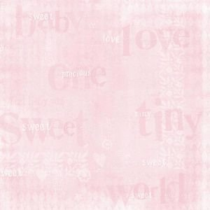 BABY GIRL PAPER SWT/TINY TYPE Papercraft, Scrapbooking (Source Book)
