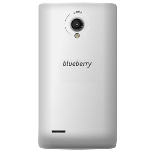 Blueberry S5.5