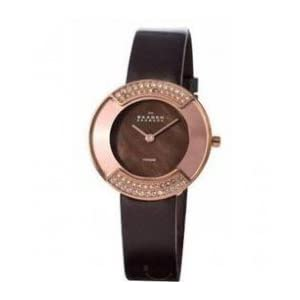 Skagen 669STRLD Ladies Watches