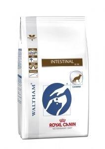 DOG INTESTINAL 14 KG Royal Canin