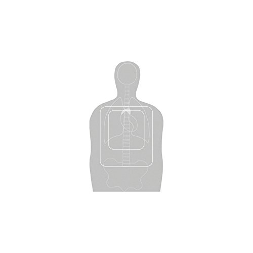 Law Enforcement Targets F-TQ15ANT-A Vital Anatomy/TQ-15 Scoring Target Gray 23x35 Inch 100 Per (Anatomy Targets compare prices)