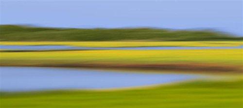 12x28-in-black-wood-katherine-gendreau-marsh-meadows
