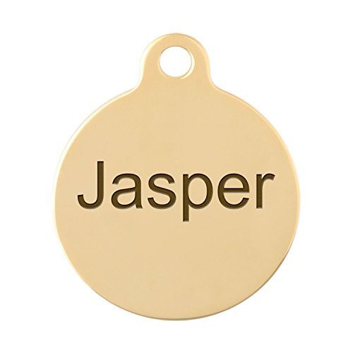 Personalized Laser Engraved Double Sided Gold 1 Inch Round Dog ID Tag with S-Hook and Split Ring (Double Sided Dog Id Tag compare prices)