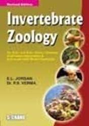 Invertebrate Zoology