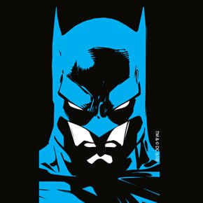 Coveroo Thinshield Snap-On Cell Phone Case for iPhone 4/4S - Batman Face at Gotham City Store