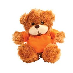PLUSH BEAR WITH ORANGE TSHIRT