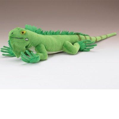 "Iguana 24"" By Wild Life Artist front-405417"