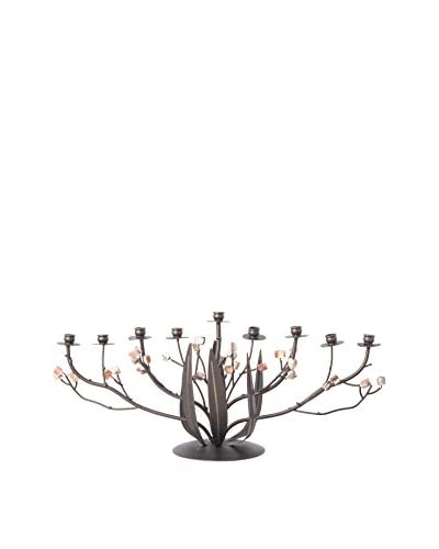 Legacy Judaica Metal Bronze Narcissus Menorah, Black