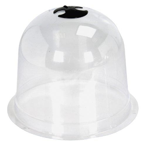 Cloche en verre les bons plans de micromonde for Mica decoration cloche