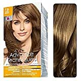 Advance Techniques Professional Hair Colour - 7.0 Dark Blonde