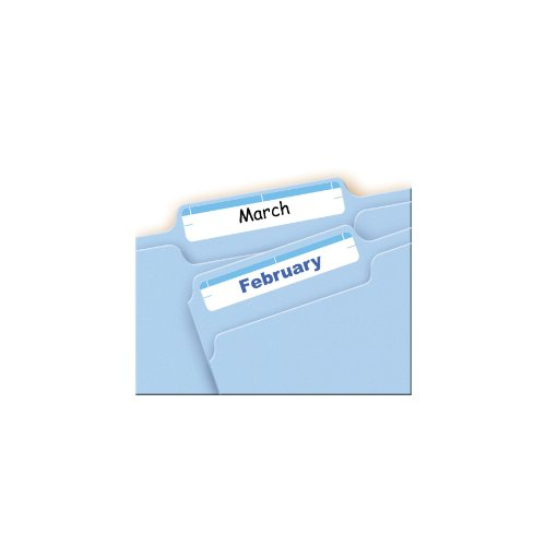 Avery Print or Write File Folder Labels for Laser and Inkjet Printers, 1/3 Cut, Light Blue, Pack of 252 (5206)
