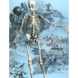 img - for Albinus on Anatomy (Dover Anatomy for Artists) [PAPERBACK] [1989] [By Robert Beverly Hale] book / textbook / text book
