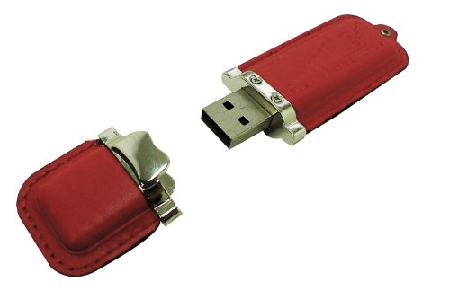 LB1 High Performance Executive Leather Alloy Flash Memory Stick 16GB USB 2.0 Data Traveler for Samsung Geek Squad Certified 15.6″ Laptop 4GB Memory 750GB Hard Drive Sleek Silver GCRF-NP300E5E-A02US (Red)