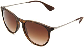 Ray-Ban RB4171 Women's Erika Sunglasses